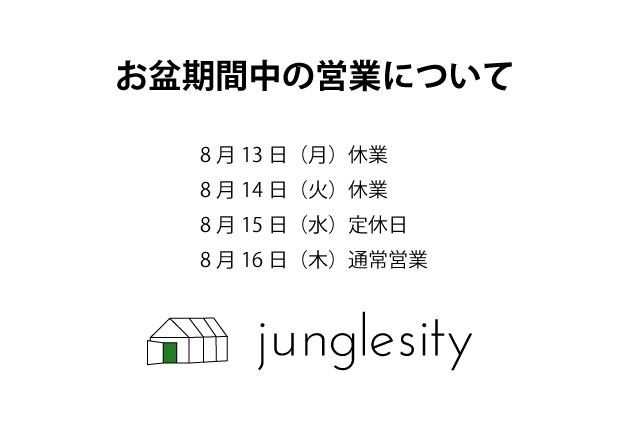 junglesity_logo