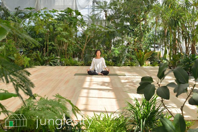 Junglesityの画像